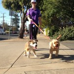 Brooke Walking Lucy and Peppa